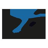 Logo WV Snits